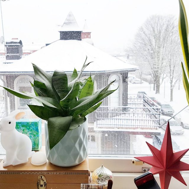 The view from my home studio window today Snow andhellip